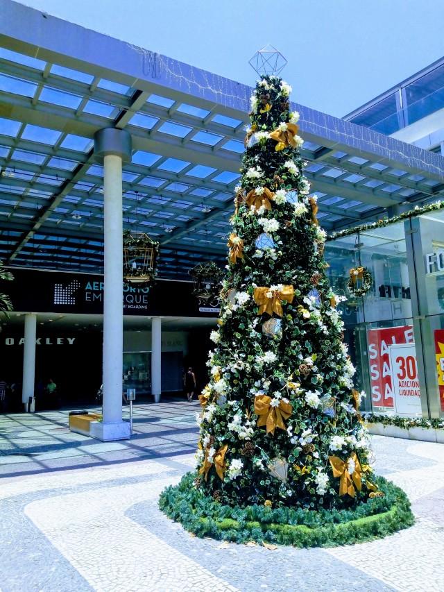 bossa nova mall-5